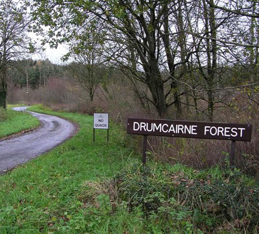 Drumcairne-Forest